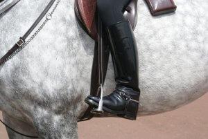 רכיבה על סוס לאחר ניתוח החלפת ירך